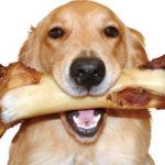 噛んで食べることは全身の健康につながります