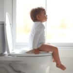毎日使うシャワートイレの裏側を見たことありますか?