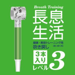 nagaiki_level3_3